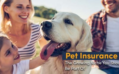 Pet Insurance: The Growing Niche You Should Be A Part Of