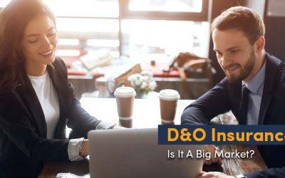 D&O Insurance: Is It A Big Market?