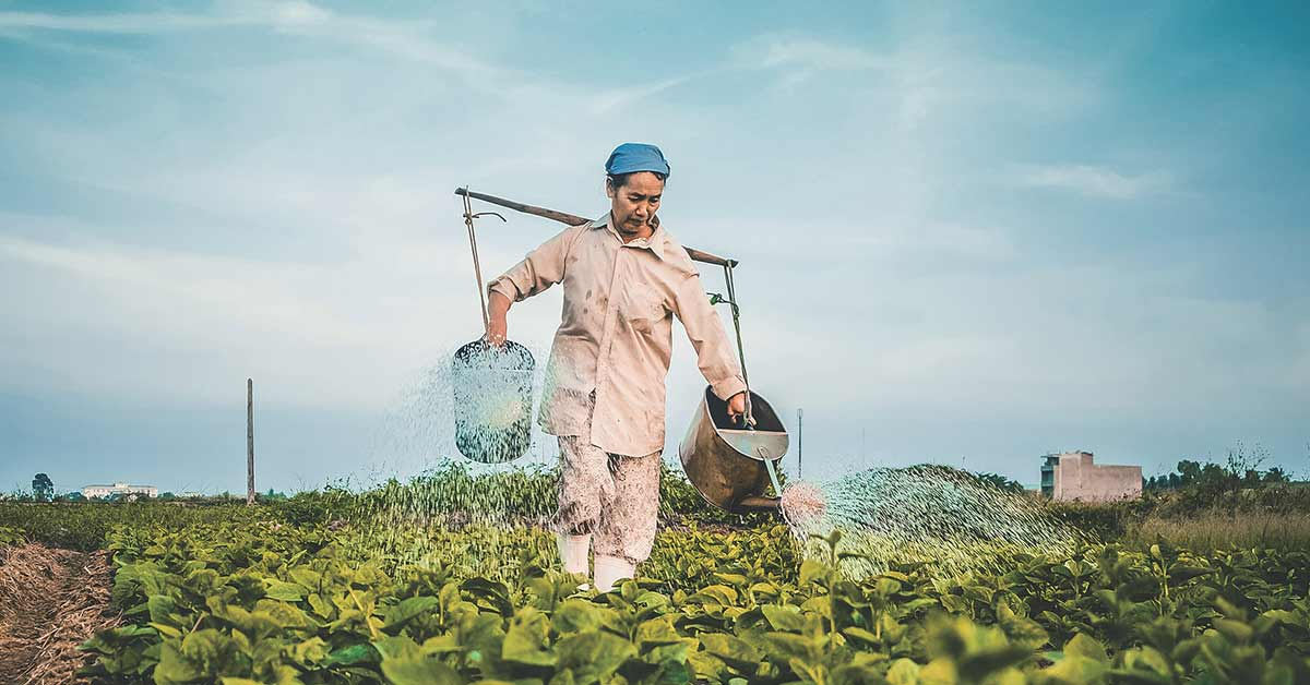 What to expect with farm insurance